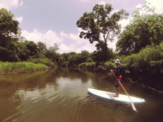 Stand Up Paddle Tobago river paddle